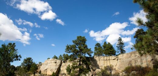 Gorgeous Things To Do In Billings