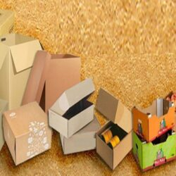 Advantages Of Printing Your Custom Packaging Boxes